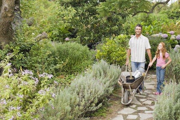 Ensine e aprenda a arte da jardinagem