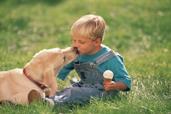Dog kisses can pass along dangerous bacteria or parasites.
