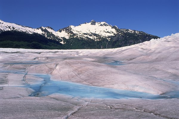 The rock left behind by glaciers is not suitable for the survival of organisms.