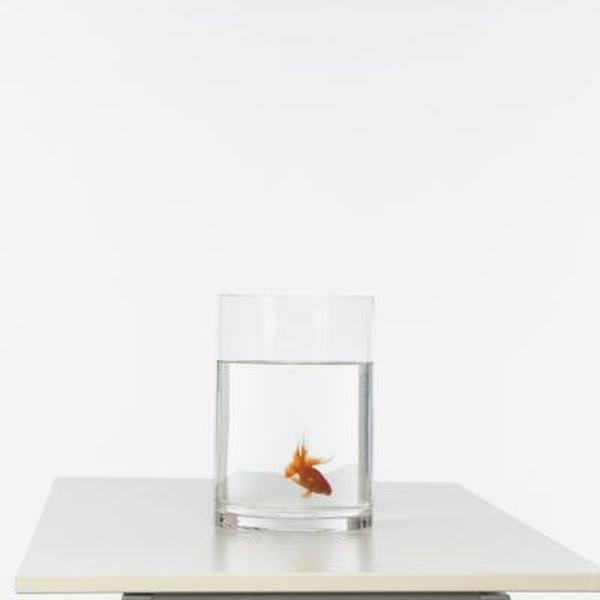 How To Get The Hard Calcium Deposits Off An Aquarium