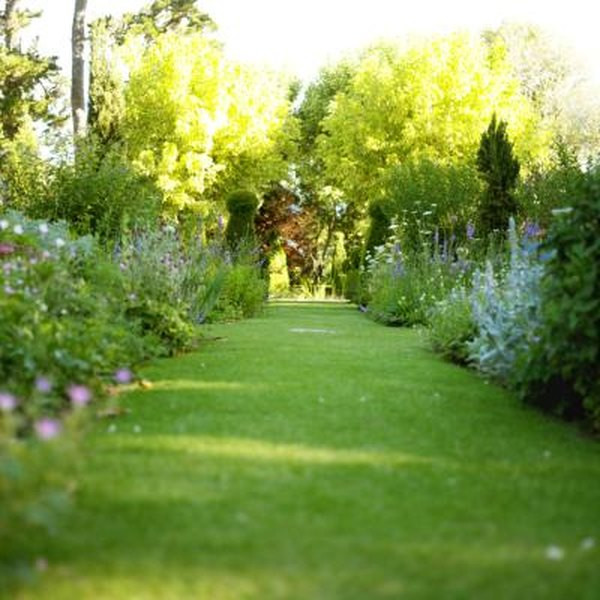 What Should I Plant in a Narrow Garden Along a Fence? | Home Guides on rain garden plants zone 6, garden design zone 9, garden design zone 4, backyard design zone 6, garden design zone 8, rock garden plants zone 6,