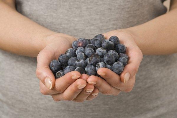 Essas frutas silvestres estão prontas para a sobremesa