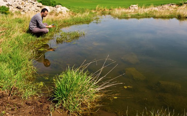 Scientist testing pH levels in a pond