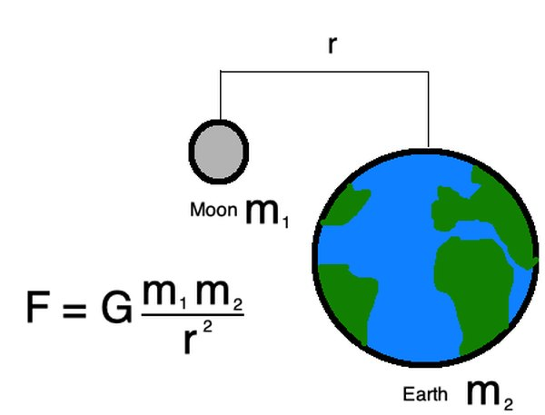 Newton's law of universal gravitation describes the gravitational force between all objects in the universe.
