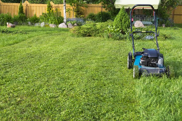 How Long Should a Lawnmower Last? | Home Guides | SF Gate