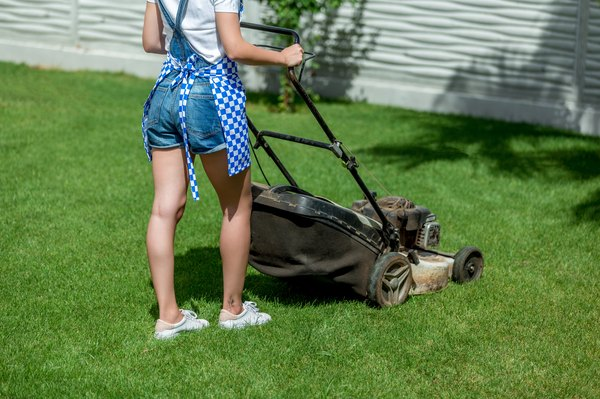 My Push Lawn Mower Doesn't Seem to Be Getting Gas | Home