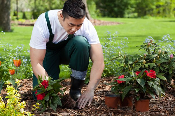 High-Paying Landscaping Jobs | Career Trend