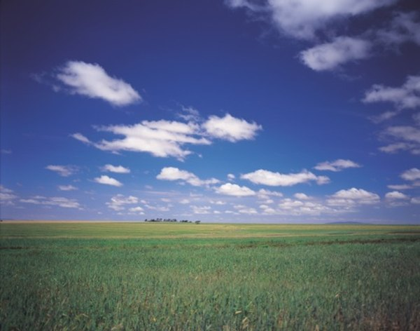 Settlers traveling into the western U.S. called the grasslands