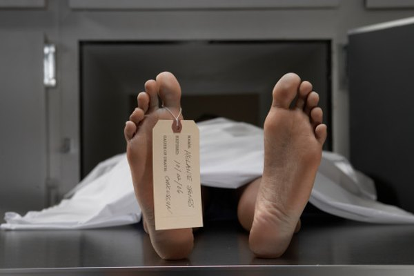 How to Become a Morgue Technician