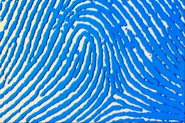 A radial loop pattern fingerprint
