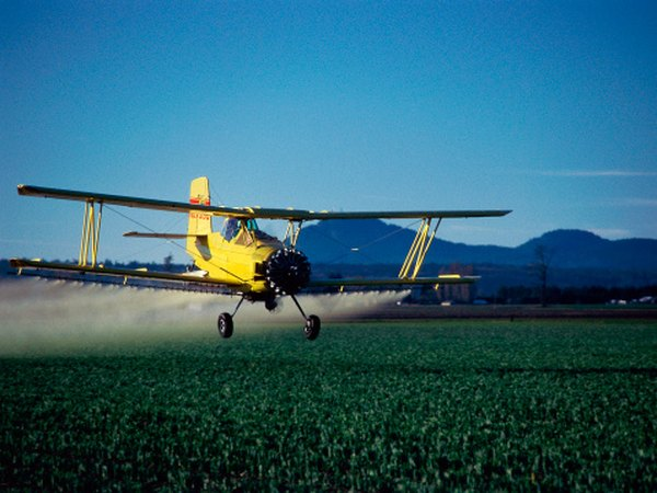 Use of insecticides has decreased in GMOs.