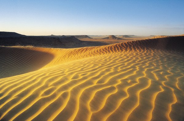Dunefields cover substantial portions of the Sahara, the world's largest hot desert.