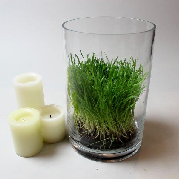 Abra espaço para as velas entre a grama