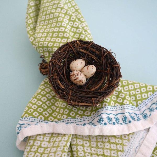 Cole pequenos ovos no ninho
