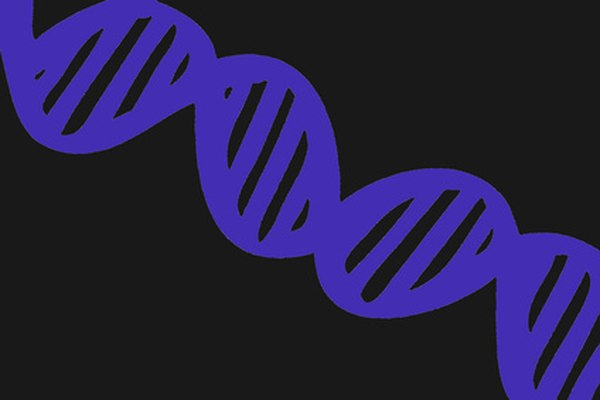 UV light can cause DNA mutations.
