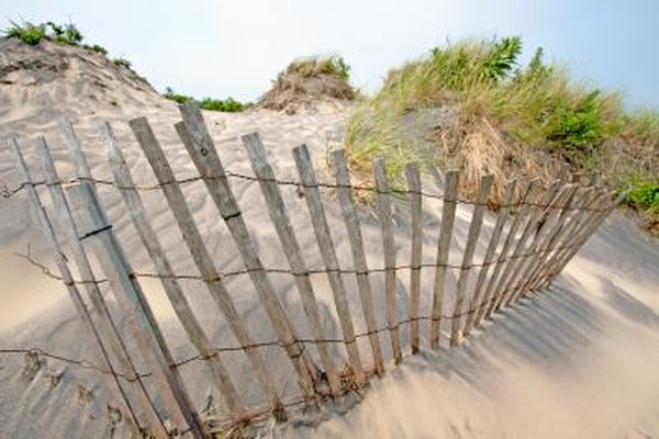 Wind breaks can slow erosion.