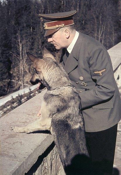 Hitler y el pastor alemán.