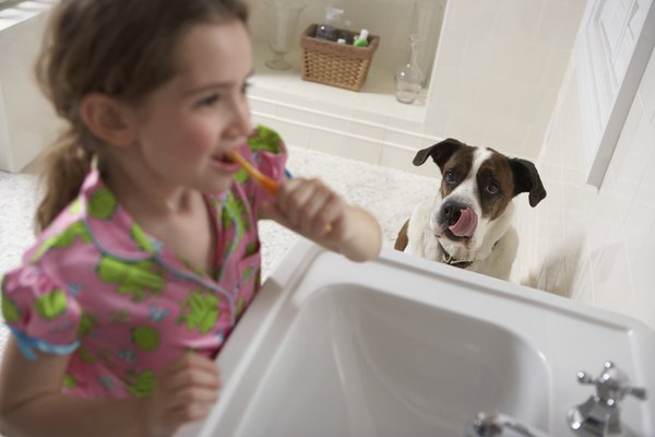Keep your doggy's teeth sparkly and clean.
