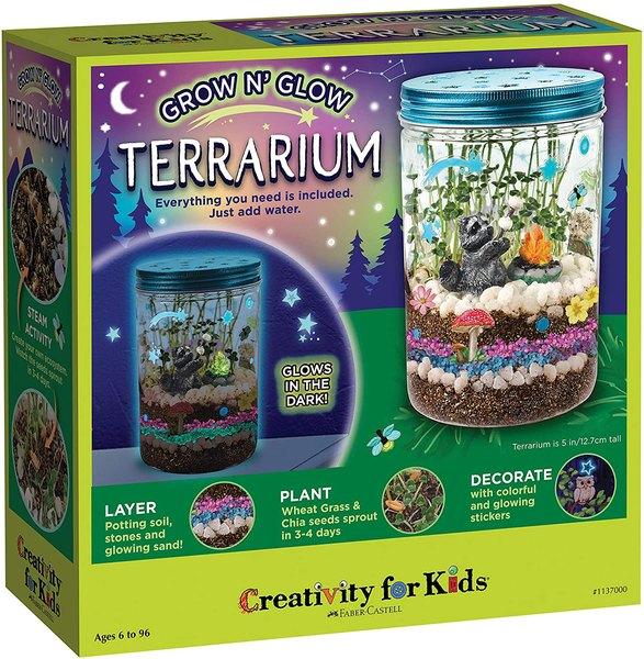Terrarium science kit