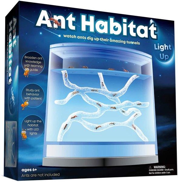 Ant habitat science kit.
