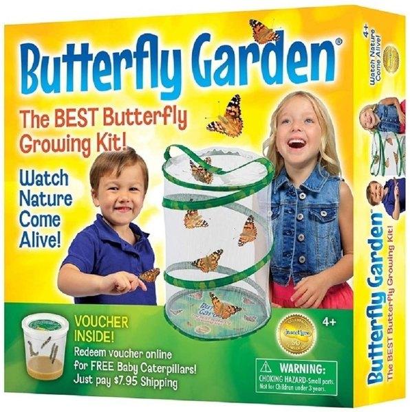 Butterfly science kit