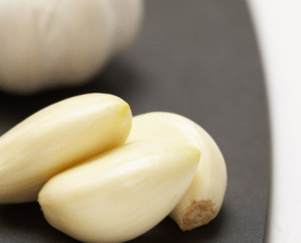 Will Fresh Garlic Help Heal a Urinary Tract Infection?   LEAFtv