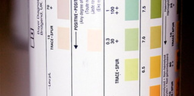 A soil test provides the information needed to adjust soil pH.