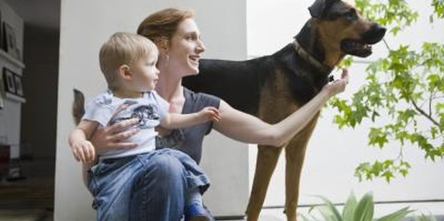 Child-proofing and pet-friendly peace of mind go hand in hand.