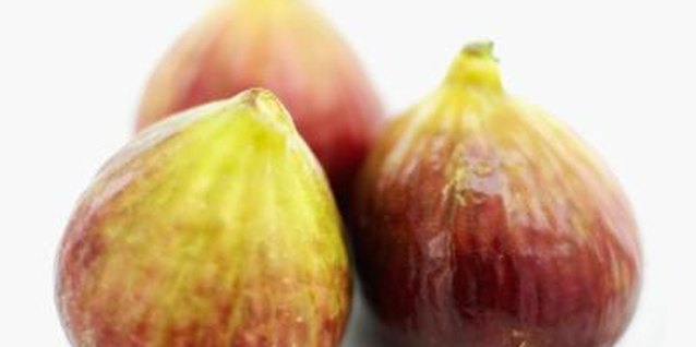 When Do Figs Ripen in Texas?