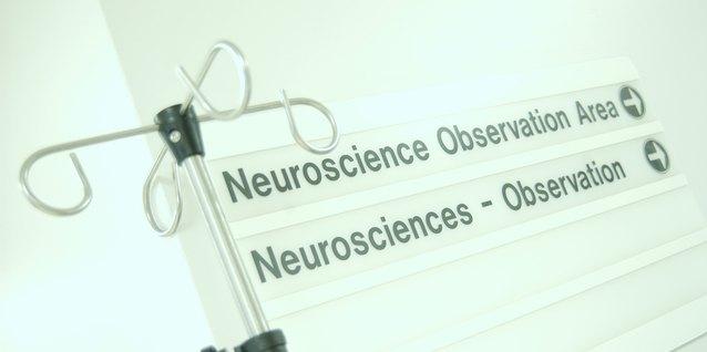 ¿Qué puedo hacer con una maestría en neurociencias?