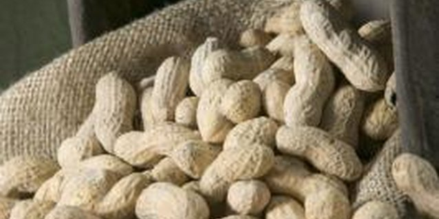 List of Foods for Kids Allergic to Peanuts