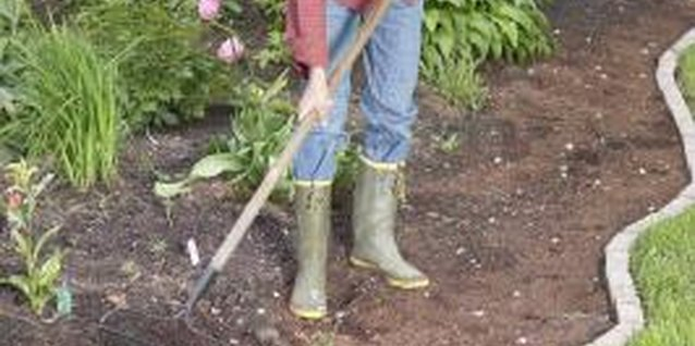 Rake the soil after each tilling to fine tune the soil.