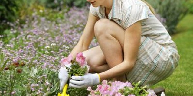 Proper preparation of a new flower bed reduces problems later.
