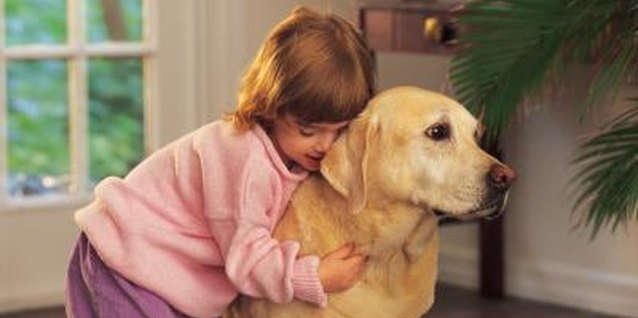 How to Discipline Children When They're Being Rough With Animals
