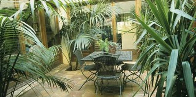 How to Plant Your Atrium