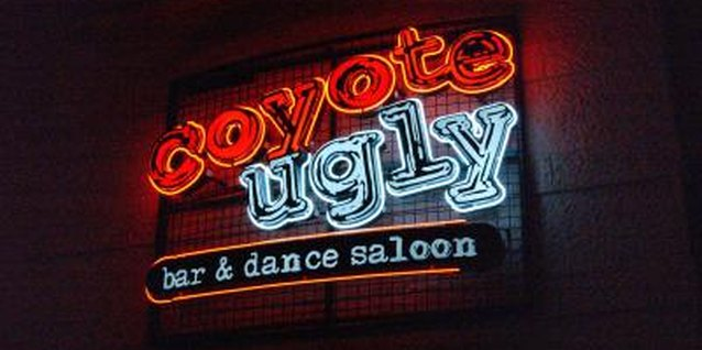 Coyote Ugly's girls were sexy, playful and confident.