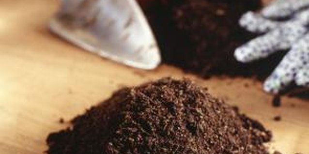 Formula for Mixing Starter Soil