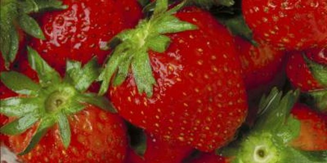 Strawberries are a commonly grown small fruit.