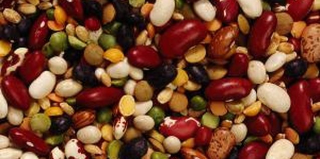 Beans and lentils are vegetarian sources of protein.