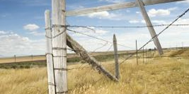 Using a Weed Eater too close to fence posts and other hard objects can break the line.