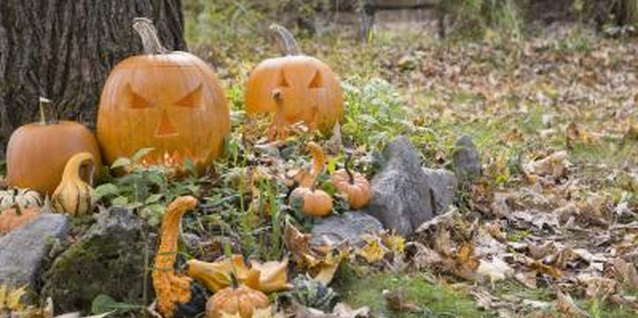 How to Decorate the Backyard for Halloween for Cheap
