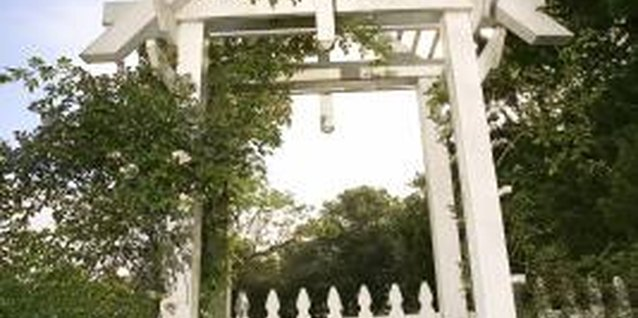 How to Construct a Vine Arch Over a Gate