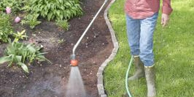 Hand watering with a garden hose may lead to shallow root systems.