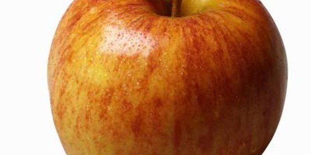 """Graventstein"" apples make excellent fresh fruit, and retain their flavor when baked or dried."