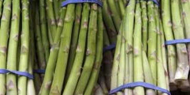 What Pests Eat Asparagus?