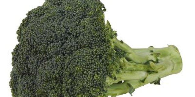 Why Are My Broccoli Heads Not Tight?