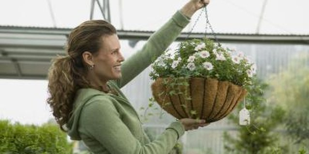 Coconut liners hold the soil and plants securely in a wire frame basket.