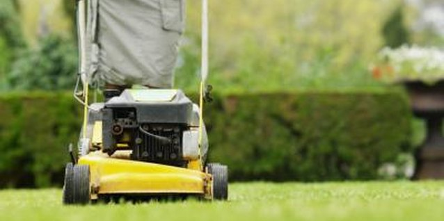 The Best Push Mowers for Ditches