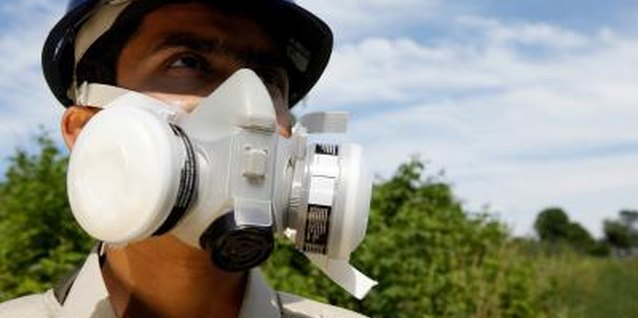 Wear a respirator when spraying chokecherry trees to avoid inhaling the spray.
