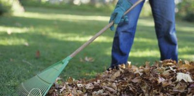 Take steps to minimize yard work.